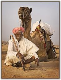 India camel and camel owner