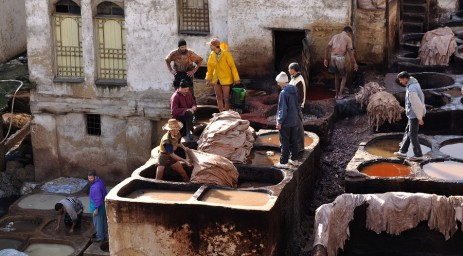 Leather tanners in the Fes medina